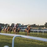 12 Horse Racing Betting Tips and Tricks